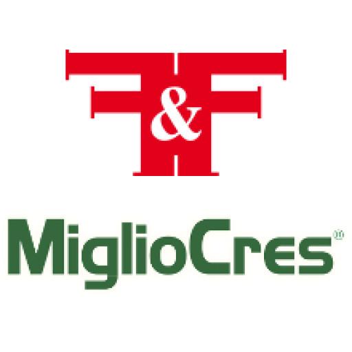 F&F _ MIGLIOCRES