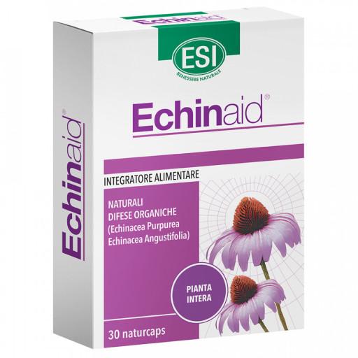Echinaid - 30 naturcaps