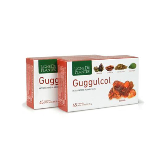 LIGNE DE PLANTES - Guggulcol - 45 capsule