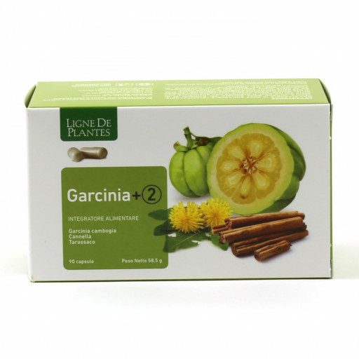 LIGNE DE PLANTES - Garcinia+2 - 90 capsule