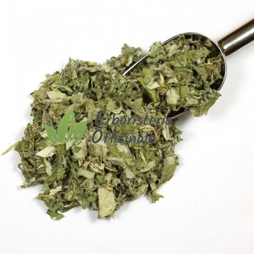 BIOKYMA - CARCIOFO EXTRA foglie - 100gr
