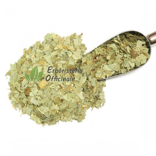 BIOKYMA - EUCALIPTO BIOLOGICO foglie - 100gr